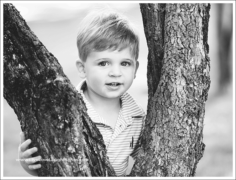 RIdgewood family photographer